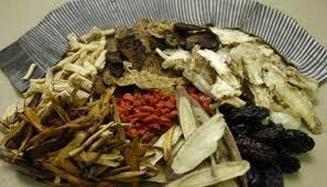 Điều trị bằng thuốc Đông dược: Muốn lành phải đúng cách
